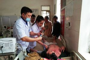 Nghệ An: Thêm một người ngộ độc do uống rượu ngâm cây rừng