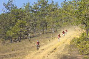Giải xe đạp địa hình toàn quốc mở rộng (quốc tế)