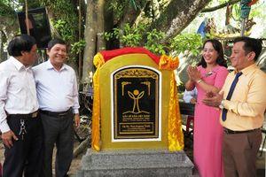 Quảng Ngãi: Đón nhận Bằng công nhận cây di sản Việt Nam