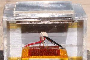 Thiết bị 'thần kỳ' có thể sản xuất nước từ không khí trong hoang mạc