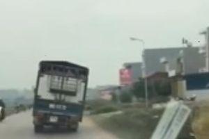 'Khiếp vía' xe tải chở lợn nghiêng 45 độ chạy băng băng trên đường