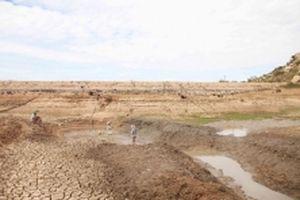 Hạn hán tại Ninh Thuận tiếp tục khốc liệt