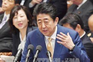 Cựu quan chức Nhật Bản: Thủ tướng Abe vô can trong vụ bê bối mua bán đất công