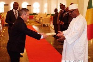Tổng thống Mali mong tăng hợp tác với Việt Nam trên nhiều lĩnh vực