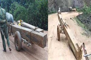 Tạm đình chỉ chức vụ Trưởng ban Ban Quản lý rừng phòng hộ Sông Tiêm