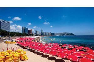 Giới thiệu nét đẹp hấp dẫn của Busan tới du khách Việt