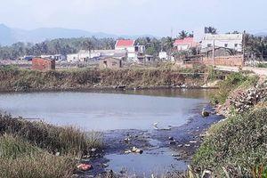 Hoài Nhơn (Bình Định): Yêu cầu UBND xã Hoài Mỹ rút kinh nghiệm sâu sắc tình trạng nuôi tôm gây ô nhiễm
