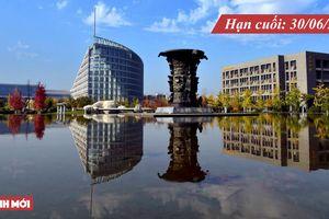 Đa dạng học bổng chính phủ Trung Quốc bậc cử nhân, thạc sĩ, tiến sĩ