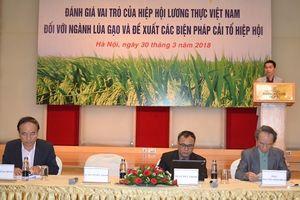 Sớm cải tổ Hiệp hội Lương thực Việt Nam