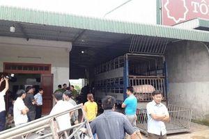 Hà Tĩnh: Bắt hai xe tải chở hơn 50 con lợn 'qua mặt' các trạm kiểm dịch