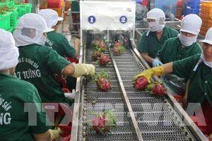 Trung Quốc có còn là thị trường nhập khẩu 'dễ tính'?