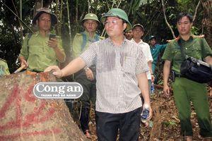 Vụ Rừng phòng hộ Sông Kôn bị tàn phá: Cần làm rõ trách nhiệm chủ rừng