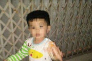 Thái Bình: Đã tìm thấy bé trai sau gần 1 ngày mất tích