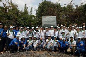 Phát động trồng rừng 'Vì một Việt Nam Xanh' năm 2018