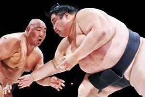 Nghề võ sĩ sumo cực nhọc hơn bạn tưởng