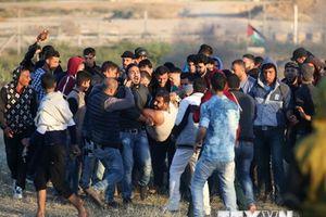 Palestine lên án Mỹ chặn tuyên bố của LHQ về tình hình ở Gaza