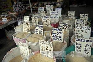 Thái Lan ứng phó với điều kiện bất lợi trong xuất khẩu gạo