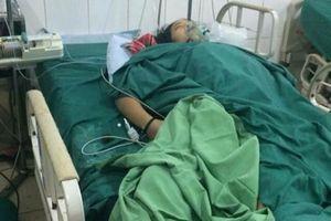 Hà Giang: Cả gia đình nhập viện vì nấm độc, 2 người chết