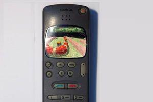 Sau 3310, Nokia 2010 sẽ tiếp tục được HMD hồi sinh?