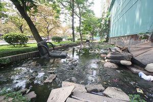 Dân Đồng Tàu bức xúc vì nhà ở như 'bể phốt lộ thiên'