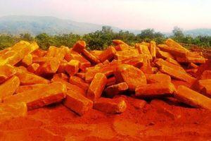 Gia Lai: Phát hiện 2 điểm khai thác đá trái phép gây ảnh hưởng vườn cà phê của dân