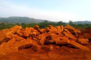 Kiểm tra môi trường, phát hiện mỏ đá bazan trái phép