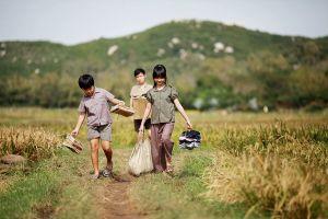 Lận đận phim chuyển thể từ văn học Việt