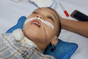Éo le hoàn cảnh bé 5 tuổi nằm bất động chỉ sau một trận sốt cao