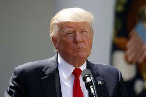 Tổng thống Mỹ ký sắc lệnh triển khai Vệ binh quốc gia tới biên giới với Mexico