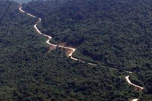 Khó giữ rừng trong khu bảo tồn thiên nhiên (Kỳ cuối: Cuộc chiến gian nan)