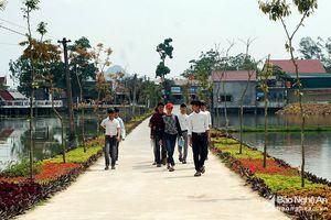 Nghệ An: Rực rỡ 'con đường hoa' ở xã Bác Hồ về thăm