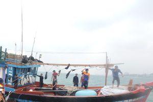 Cứu 12 ngư dân bị nạn trên biển