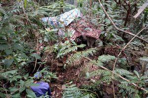 Phát hiện thi thể nam thanh niên chết giữa rừng