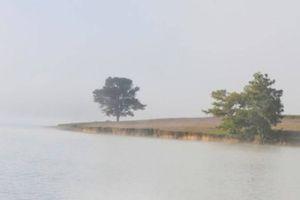 Thi thể nam thanh niên đeo balo đá nổi trên hồ Suối Vàng Đà Lạt