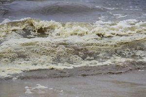 Đã có kết luận nước biển đổi màu sẫm, sủi bọt nổi lềnh bềnh ở Đà Nẵng
