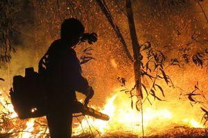 Rừng Tà Cú vẫn còn cháy âm ỉ