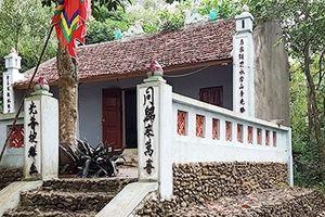 Dưới gốc thi làng Việt Yên