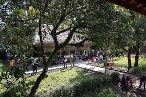 Trồng hơn 1.000 cây xanh trên đường vào khu di tích nhà cụ Vi Văn Khang