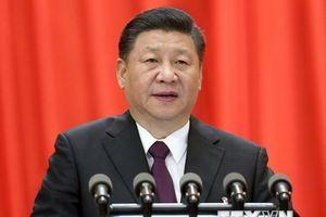 Chủ tịch Trung Quốc Tập Cận Bình đề cao các 'đề xuất Bác Ngao'