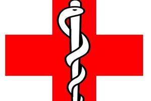 Những câu chuyện hấp dẫn về con rắn - biểu tượng của ngành Y cứu sống con người