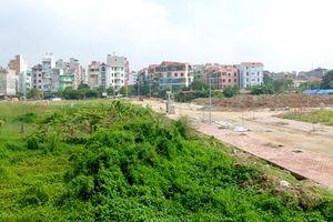 Chủ dự án chậm đưa đất vào sử dụng có thể bị xử lý hình sự