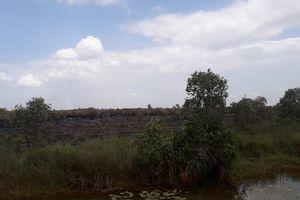 Kiên Giang: Đồng cỏ bàng Phú Mỹ bị cháy