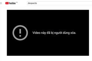 MV Despacito với hơn 5 tỉ lượt xem bị hack khỏi YouTube?