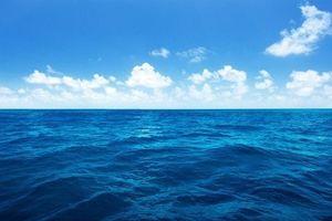 Indonesia bắt tàu cá bất hợp pháp với lưới dài 30km