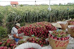 Hợp tác nông nghiệp Việt Nam-Australia: Hiệu quả và bền vững