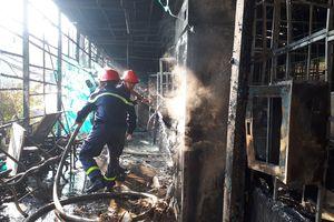 Cháy khu nuôi trồng chế biến sâm Ngọc Linh ở Đà Lạt