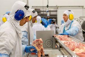 EU đề xuất chấn chỉnh hành vi gian lận trong chuỗi chế biến thực phẩm