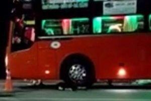 'Chơi dại', một người đàn ông bị xe khách tông chết