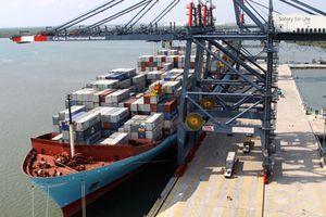 Khơi thông tiềm năng lớn của vận tải biển