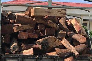 Cảnh sát giao thông Bình Định truy bắt thành công xe tải chở gỗ lậu